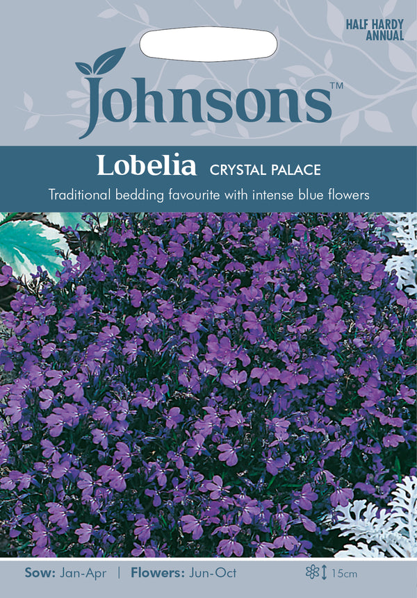 Johnsons 121111 Lobelia erinus-  Lobelia Crystal Palace