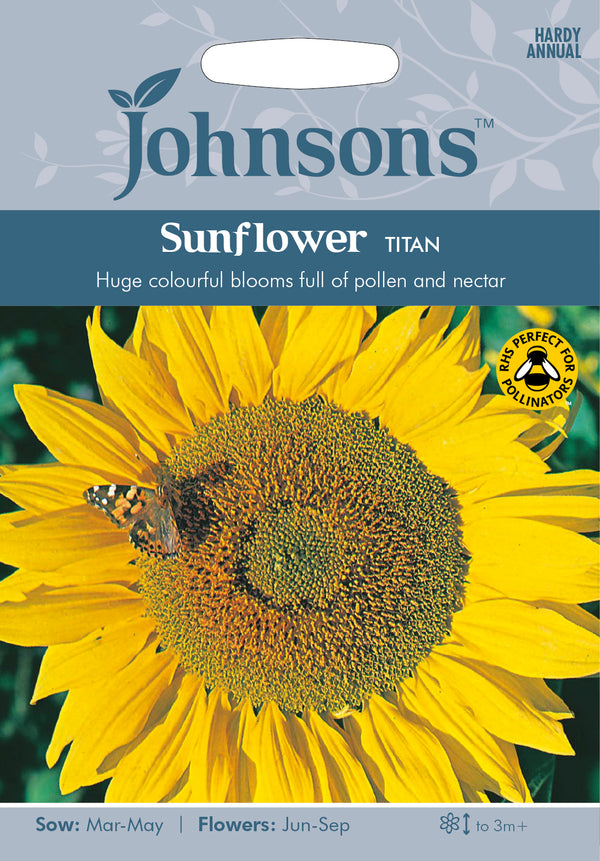Johnsons 121145 Helianthus annuus - Sunflower Titan