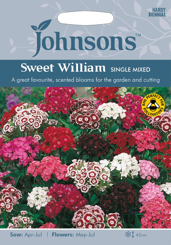 Johnsons 121154 Dianthus barbatus - Sweet William Single Mixed