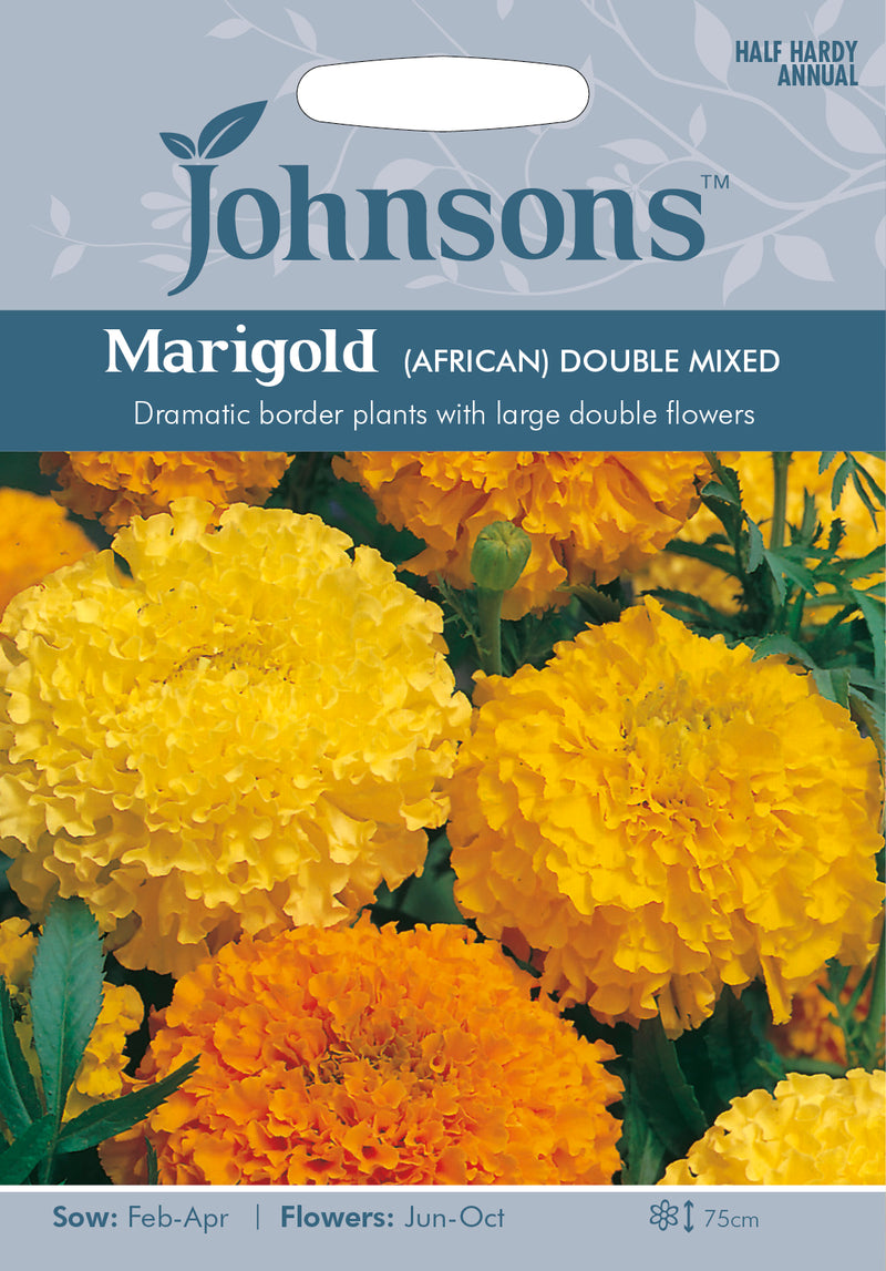 Johnsons 121180 Tagetes erecta - Marigold (African) Double Mixed
