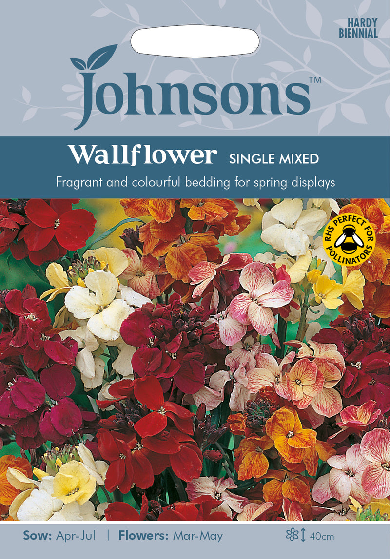Johnsons 121195 Erysimum cheiri - Wallflower Single Mixed