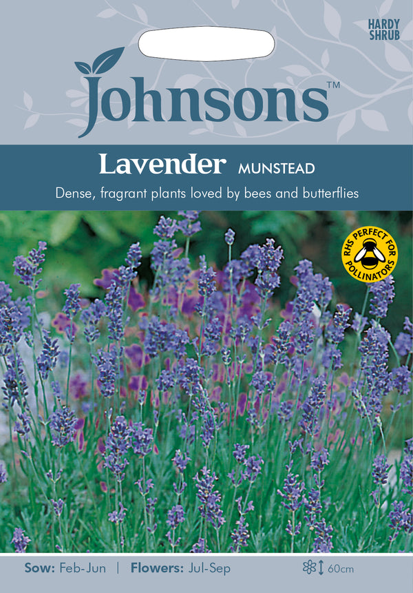 Johnsons 121240 Lavandula angustifolia - Lavender Munstead