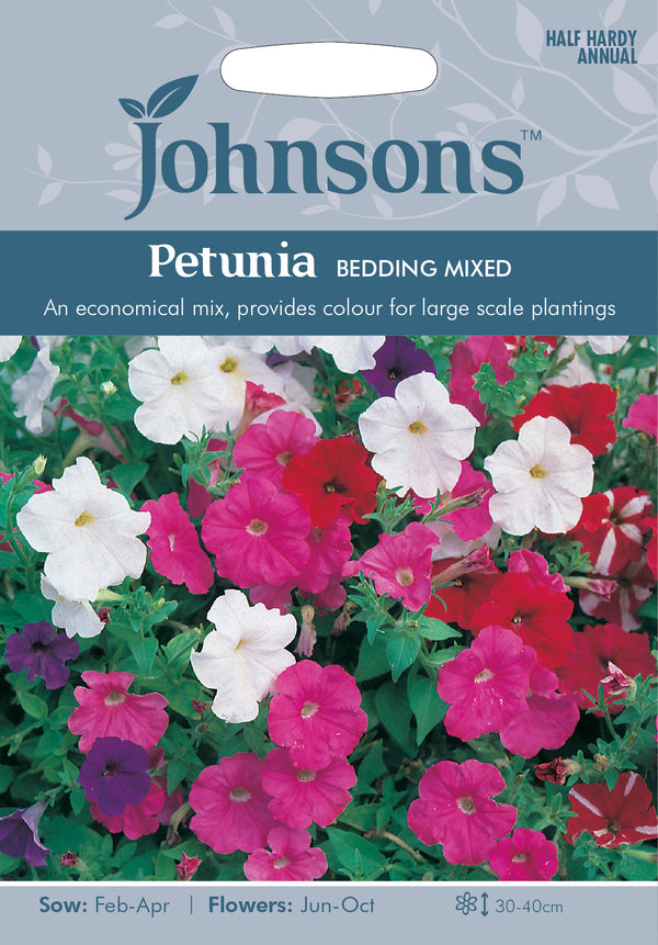 Johnsons 121321 Petunia multiflora - Petunia Bedding Mixed