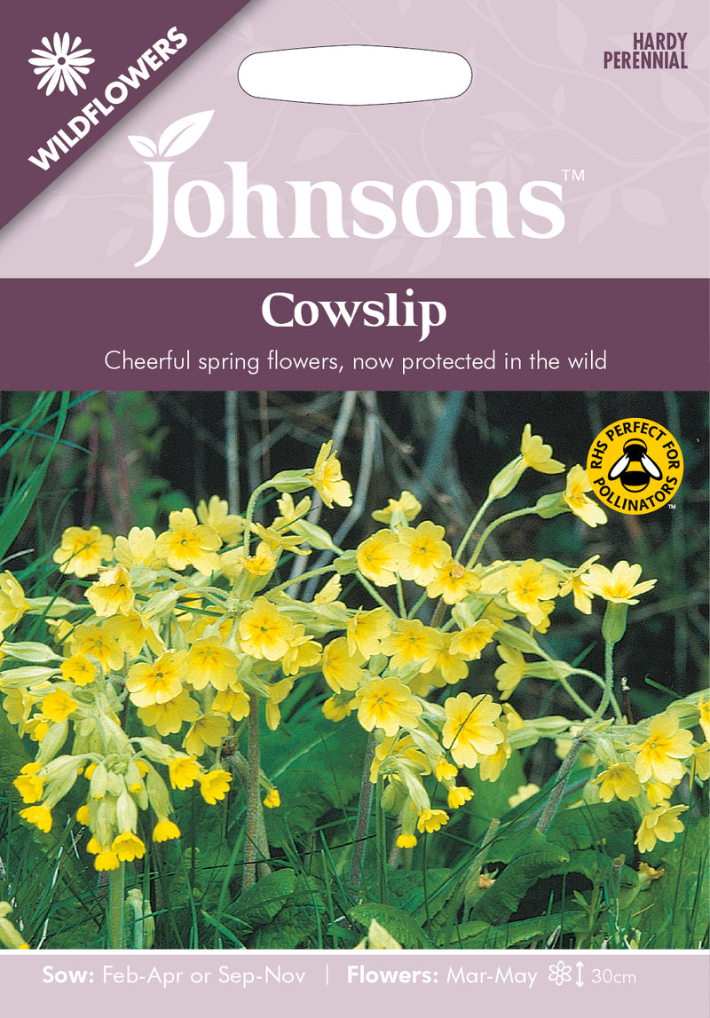Johnsons 121323 Primula veris - Wildflower Cowslip