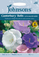 Johnsons 123377 Campanula medium - Canterbury Bells Cup and Saucer Mixed