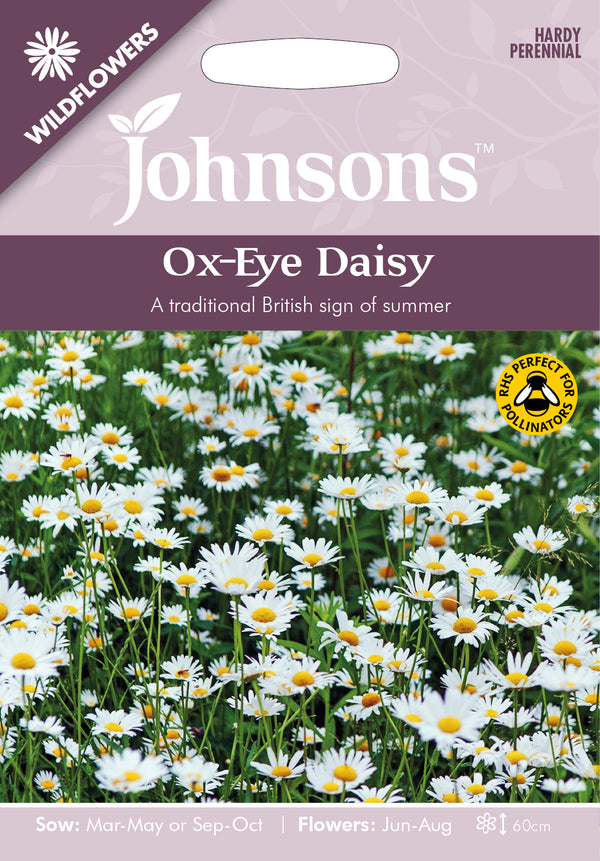 Johnsons 123520 Leucanthemum vulgare - Wildflower Ox Eye Daisy
