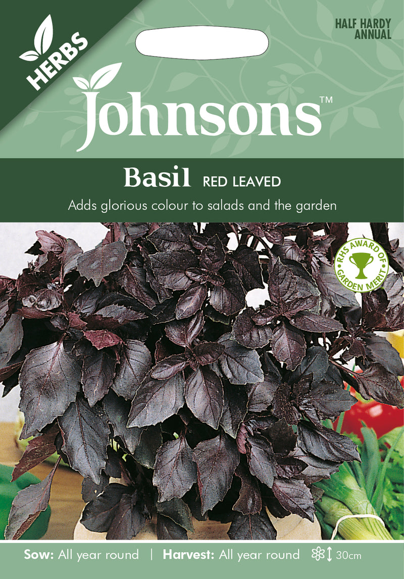 Johnsons 123528 Ocimum basilicum - Basil Red Leaved