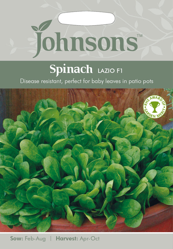 Johnsons 123615 Spinacia oleracea - Spinach Lazio F1
