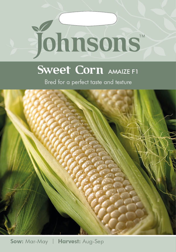 Johnsons 125031 Zea mays - Sweet Corn Amaize F1
