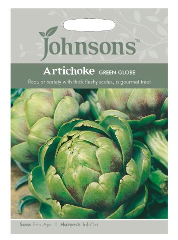 Johnsons Cynara cardunculus - Artichoke Green Globe