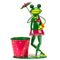 Brolly Frog Pot Planter 5030349
