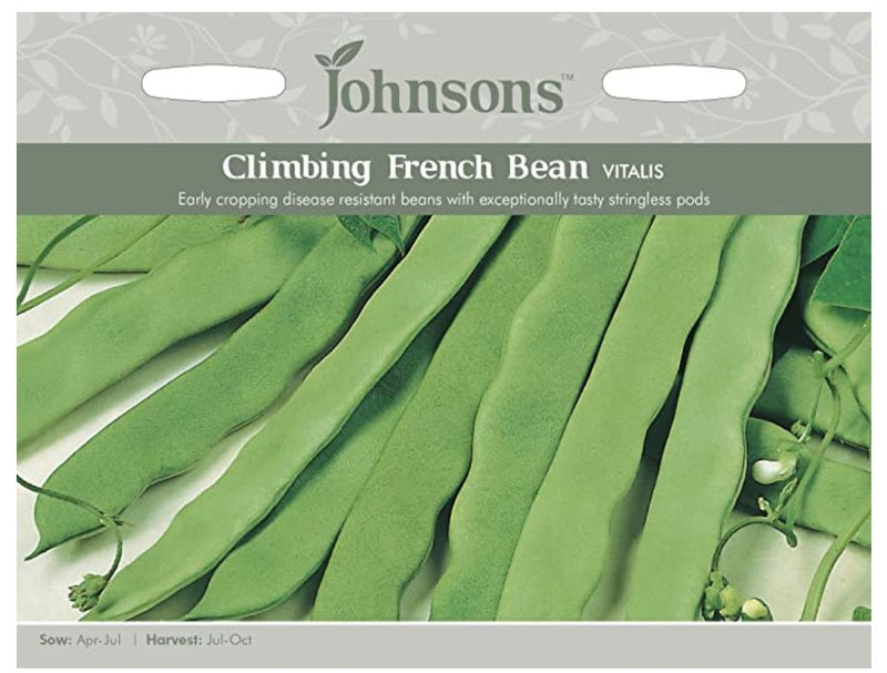 Johnsons Phaseolus vulgaris - Climbing French Bean Vitalis