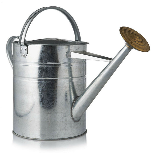 Homehardware Watering Can Galvanised 2 Gallon