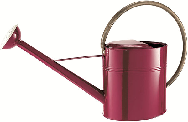 Moulton Mill 34978 Burgundy Metal Vintage Watering Can