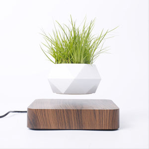 Levitating Air Bonsai Pot Rotation Flower Pot Planters Magnetic Suspension Floating Pot Potted Plant Home Desk Decor - AFH Home Decore