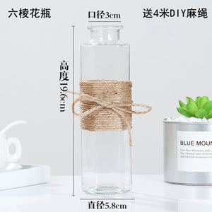 Creative Nordic Glass Vases Living Room Table Decoration Transparent Water Hydroponics Flower Rope Dry Flower Vase Diy Bottle - AFH Home Decore