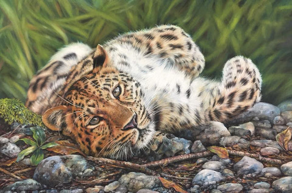 Big Cat Pastels with Alison Burchert: </b><p>September 13-16, 2018</p>