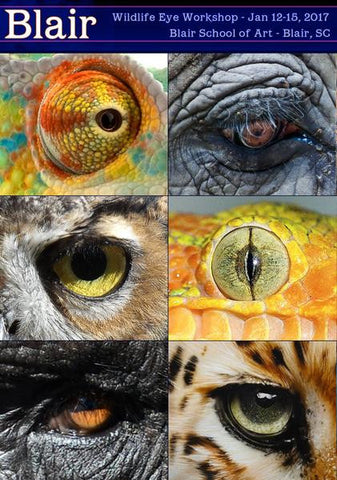 Dru Blair: Airbrush - Eyes of the Wild </b><p>January 12-15, 2017</p><p></b>(6 Seats Remaining) </p>