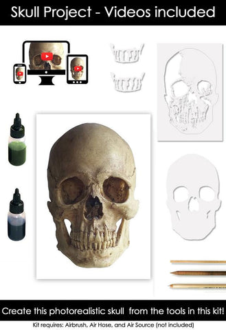 Classroom in a Box: Skull kit