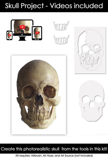 Classroom in a Box: Skull project - (no paint or tools)