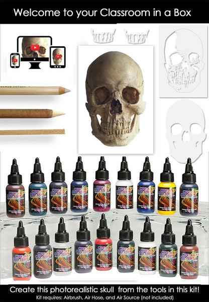 Classroom in a Box: Skull kit - (Extra paint colors!)