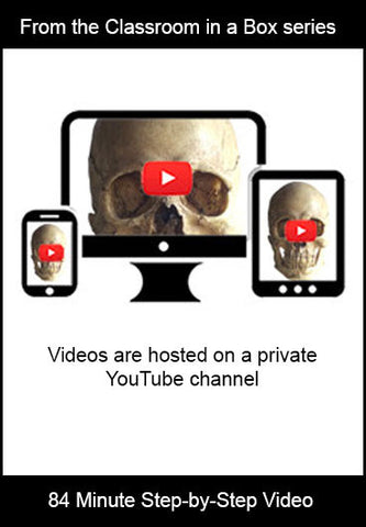 Classroom in a Box: Video - Skull