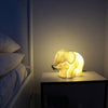 White Hedgehog Mini Lamp