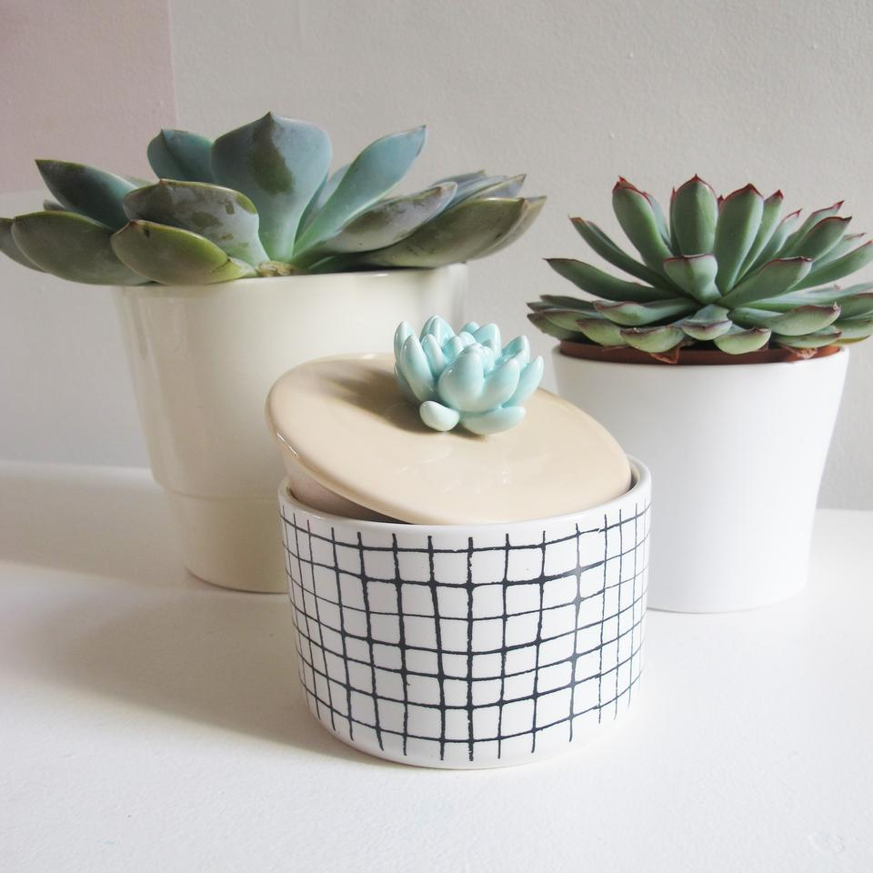 White Ceramic Succulent Jar