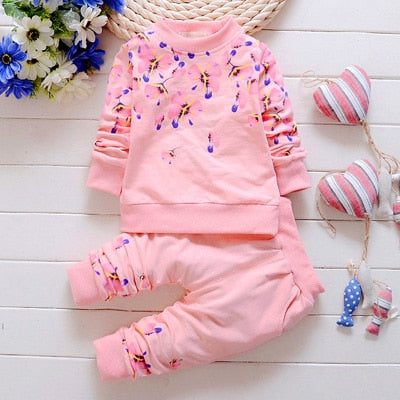 Baby Girl Clothing Sets Fashion Long Sleeve Print Flower Toddler Tshirt + Pants 2PCS 1 2 3 4 Years Kids Girls Wear