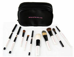Professional Brush Set-10 piece.  (A $100.00 value)
