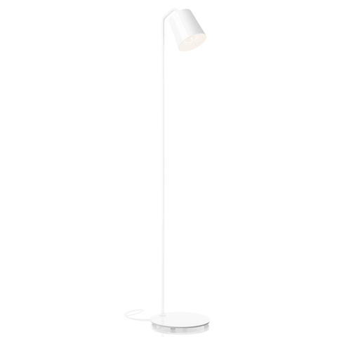 Hide Floor Lamp