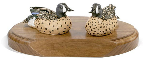 Blue-winged Teals on a Base