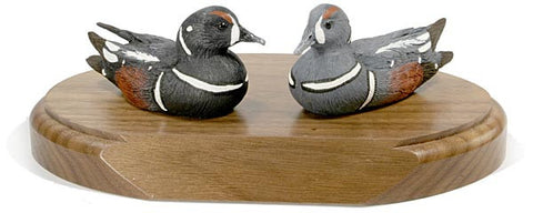 Harlequin Ducks on a Base