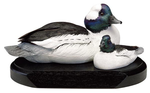 Bufflehead and Duckling on a Base
