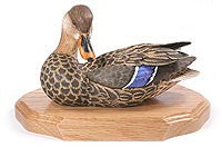 Mallard with Tilted Head on a Base