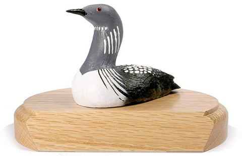Arctic Loon Duck on a Base