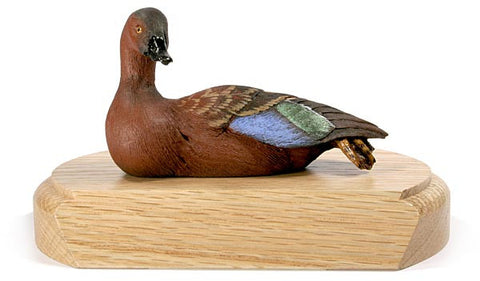Cinnamon Teal on a Base