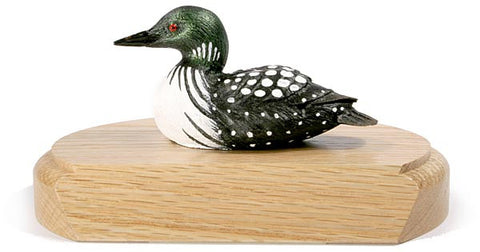 Female Common Loon Duck on a Base