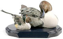 Northern Pintail Drake and Duckling on a base