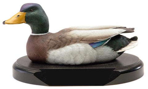 Dark Plumage Mallard on a Base