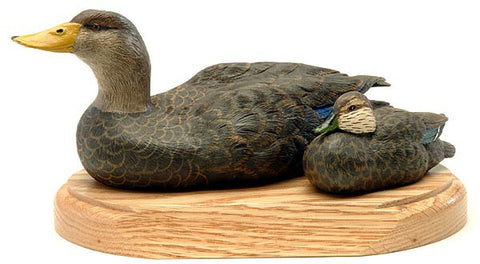 American Black Ducks on a Base