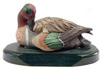 Tilted Head Green-winged Teal Drake on a Base