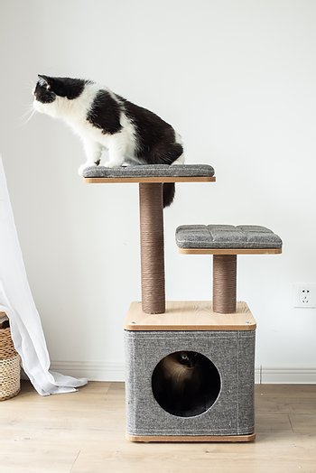 3 Level Cat Tree, with Condo, Particle Board Perch, and Paper Rope Posts - JT wagglepurr