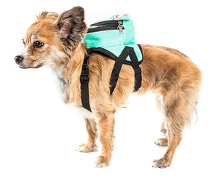 'Dumbone' Dual-Pocketed compartmental animated Blue Dog Harness Backpack - JT wagglepurr