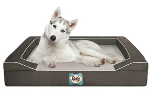 Sealy Dog Beds - JT wagglepurr