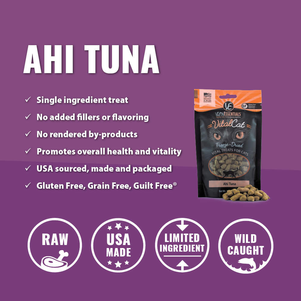 Ahi Tuna Freeze-Dried Treats (3-pack) - JT wagglepurr