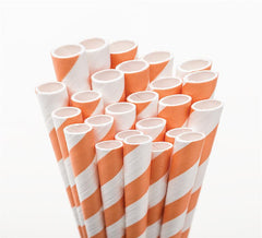 Bright Orange Stripe Paper Straws