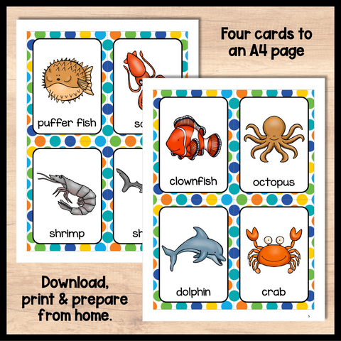 ESL Beginners Flashcards - Ocean Animals Flashcards for Online ESL and VIPKID Classes
