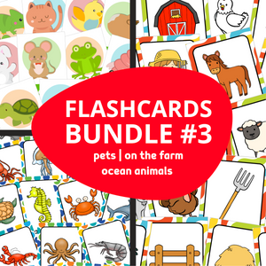 ESL Flash Cards Bundle #3
