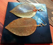 Load image into Gallery viewer, GOLDEN GAIA |EARTH GODDESS | LEAF  EARRINGS